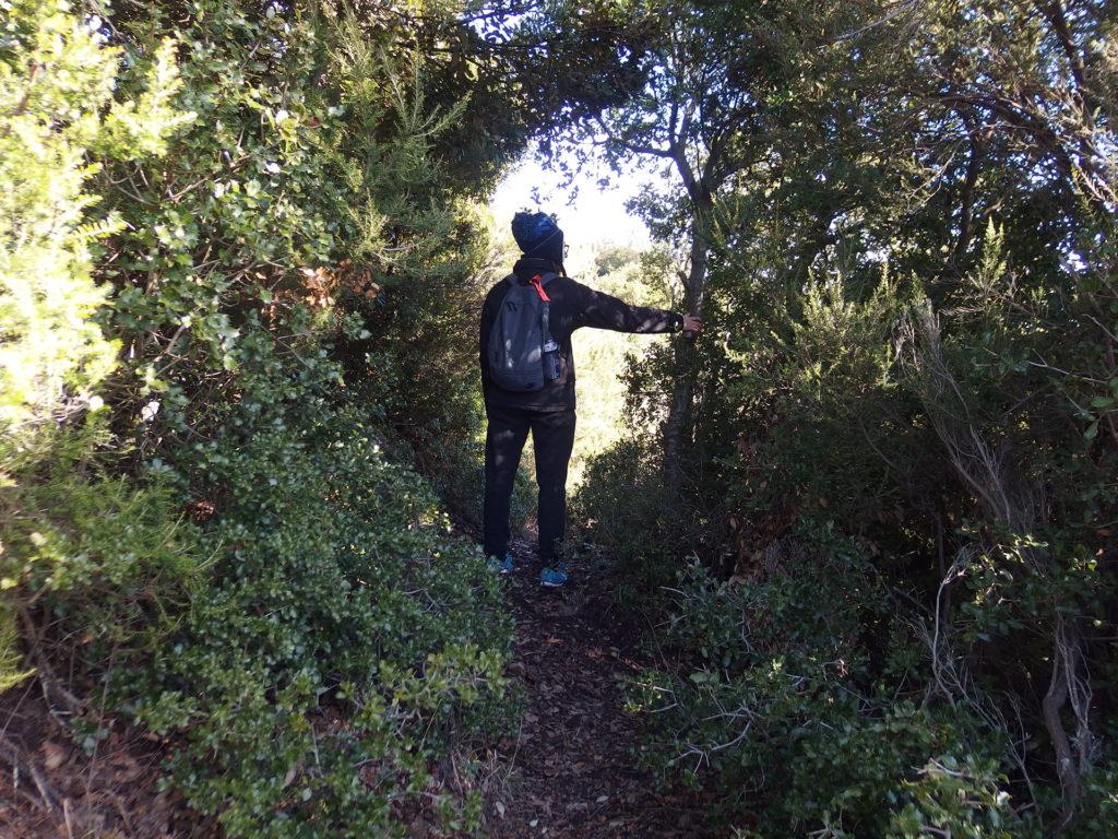 Artistotle Path - Hiking in Halkidiki