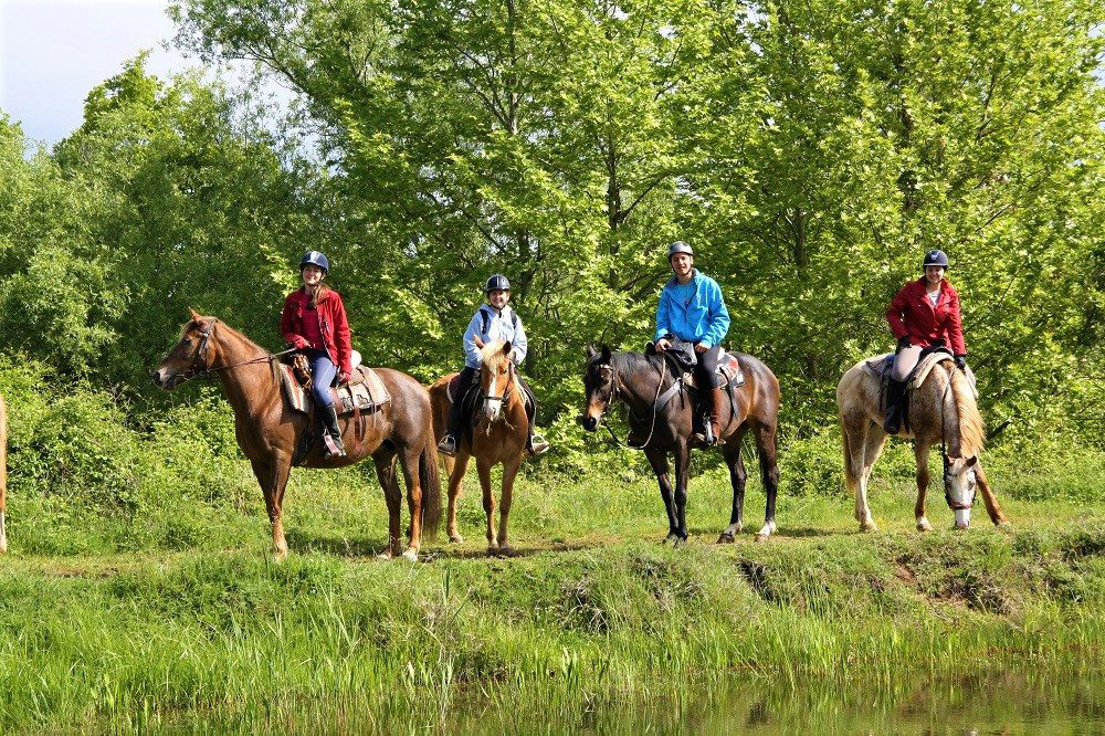 Horse Riding for Families in Thessaloniki