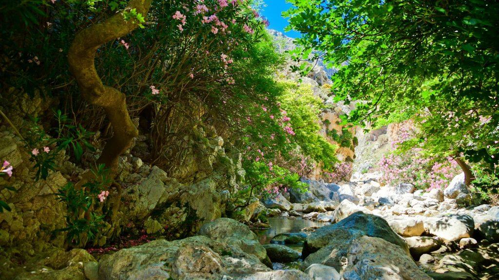 Discover South Crete Tour