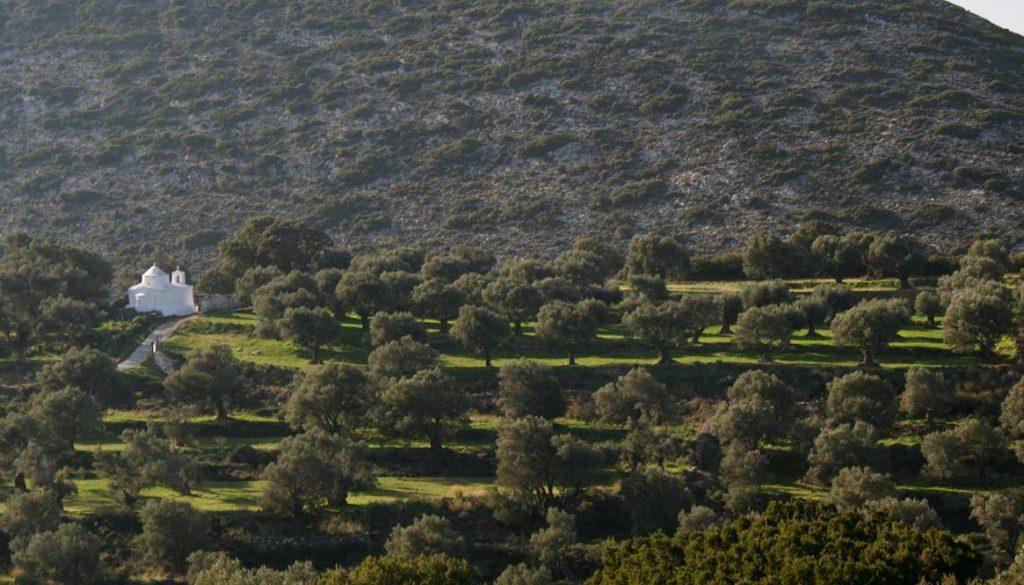 Byzantine Naxos Hiking Paths Tour, Greece